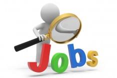Jobs |  Finance Manager