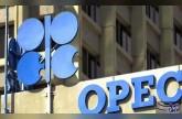 تقرير لمنظمة أوبك يؤكد نمو الاستثمارات الخاصة في صناعة الغاز في مصر والأردن
