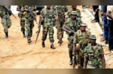 الجيش النيجيري يقتل 42 من مسلحي بوكو حرام ويحرر 80 رهينة