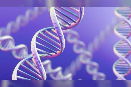 العلماء يكتشفون أكثر من 100 مورّثة تحدد لون الشعر