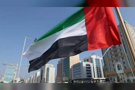 Monthly aid sought for people of determination in UAE