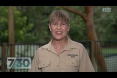 Terri Irwin invites everyone to the unveiling of Steves Hollywood star