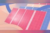 تسلا تحصل على موافقة لإنشاء أكبر محطة افتراضية للطاقة الشمسية في العالم في جنوب أستراليا
