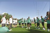 «الأخضر» يخوض أولى التجارب القوية أمام إيطاليا.. غداً