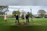 Trump-Macron tree faces at least 2 years in quarantine
