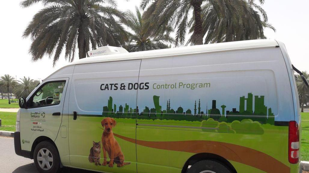 Rescue pets in Abu Dhabi must be registered, Tadweer urges - Dotemirates