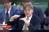 Guy Verhofstadt warns MPs of two decade Brexit ratification