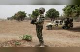 تسعة قتلى على الاقل في عمليات انتحارية في جنوب شرق النيجر (مسؤول محلي)