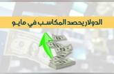 إنفوجراف.. الدولار يحصد المكاسب خلال شهر مايو