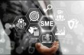 100 % نمو سنوي لأهم الشركات الصغيرة في الدولة