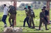 الاحتلال يعتقل 13 فلسطينيا بالضفة ويستهدف صيادي غزة
