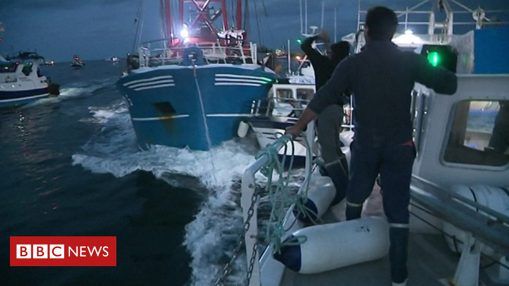 Scallop negotiations end with no deal, say fishing leaders - Dotemirates