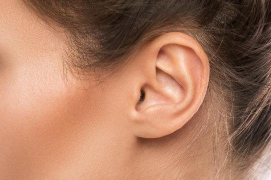 اكتشاف خلايا عصبية في الأذن تساعد في علاج اضطرابات السمع - دوت امارات