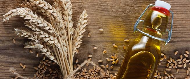 زيت جنين القمح: أهم فوائده وأضراره - دوت امارات