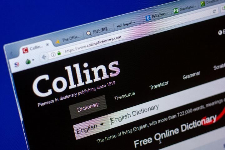 Collins Dictionary chooses 'single-use' as word of the year
